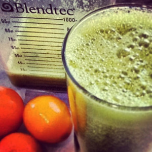blentec green smoothie
